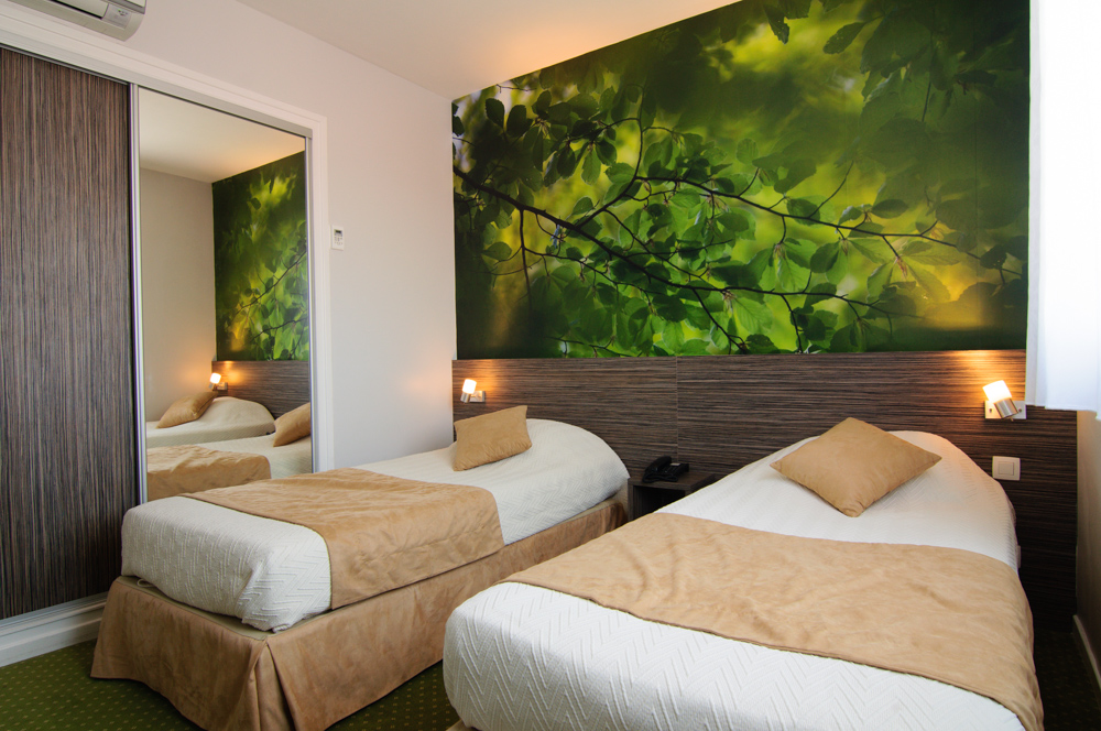 Chambre nature hotel dauly lyon bron for Decoration chambre zen nature